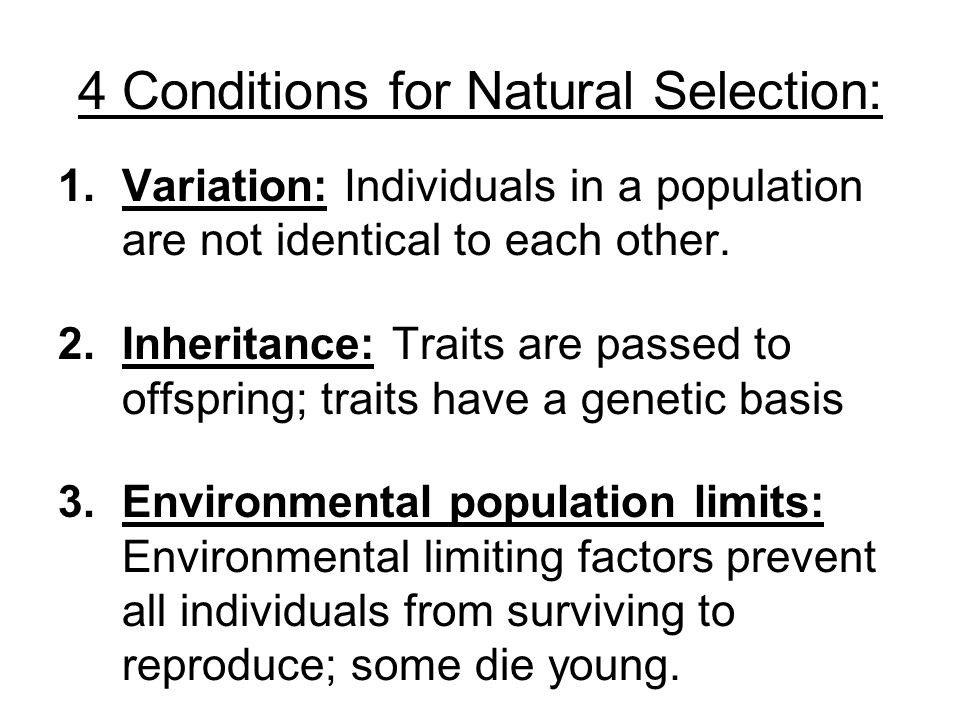 4 Conditions for Natural Selection:
