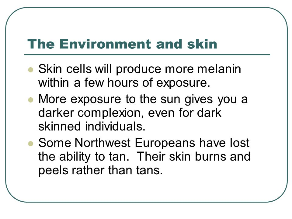 The Environment and skin