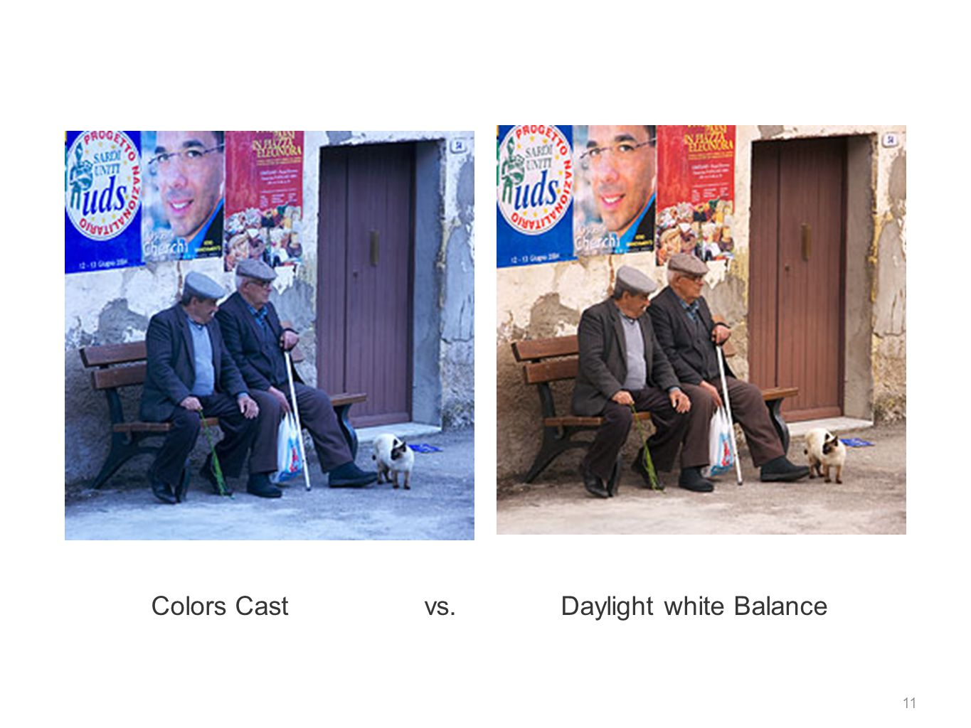 Colors Cast vs. Daylight white Balance