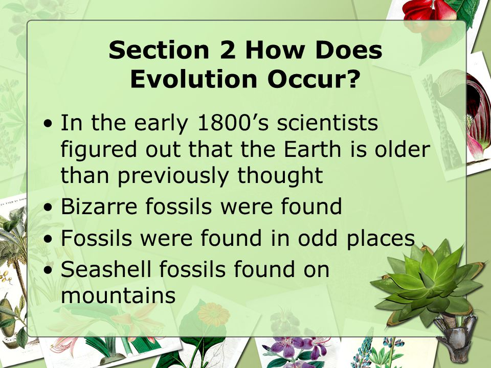 Section 2 How Does Evolution Occur