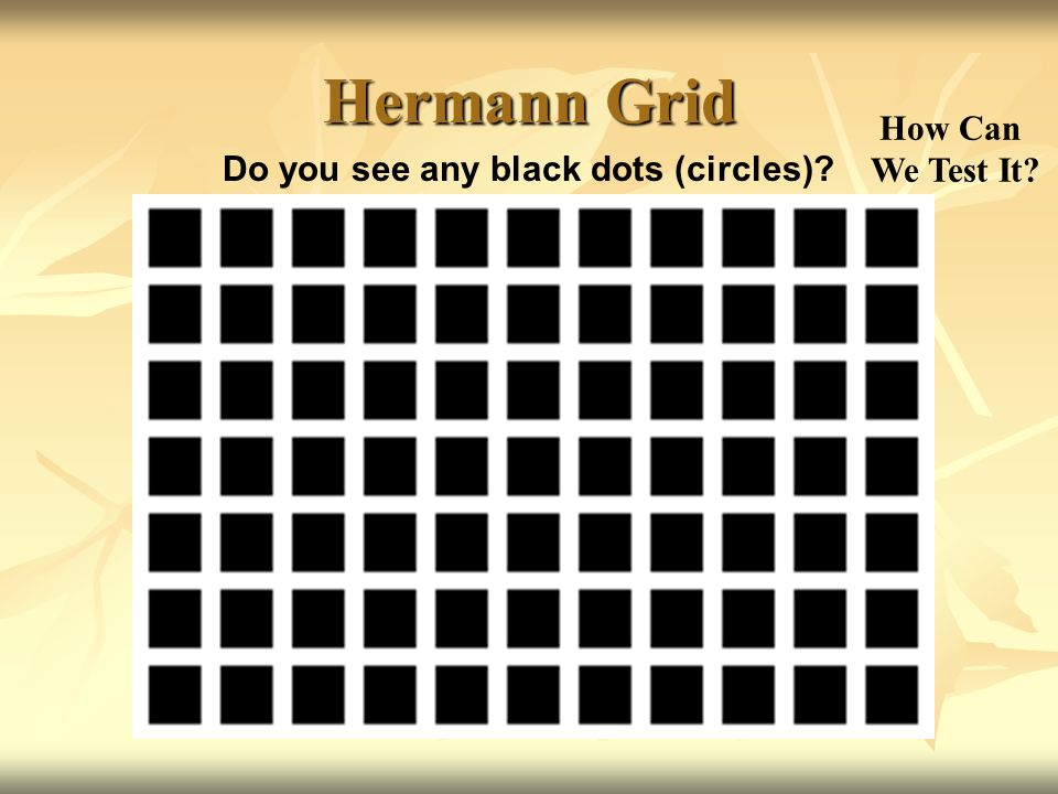 Do you see any black dots (circles)