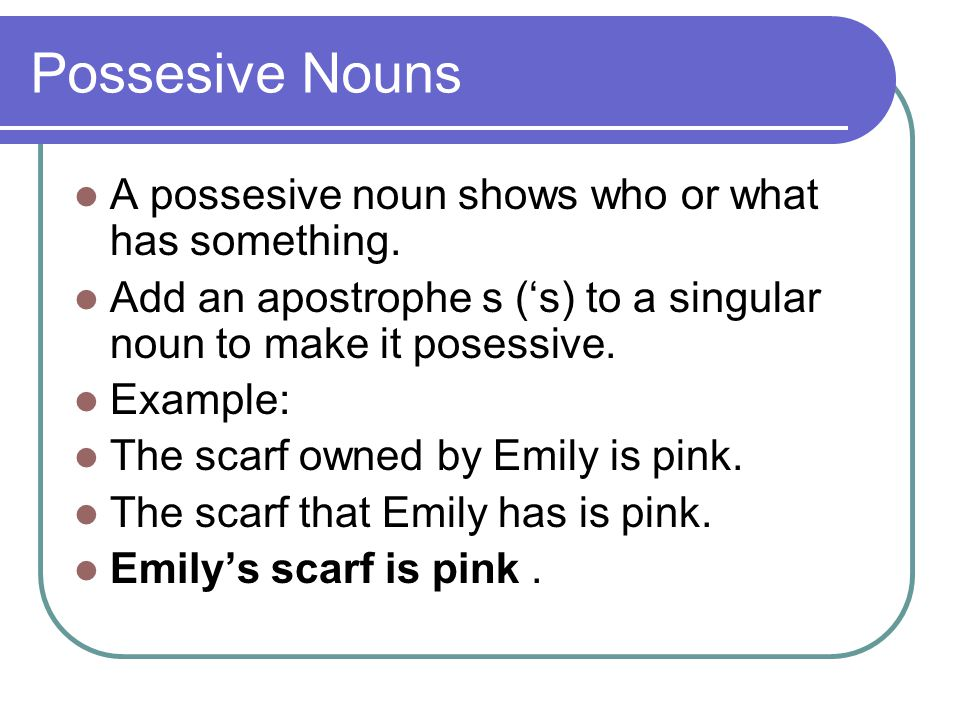 Possesive Nouns A possesive noun shows who or what has something.