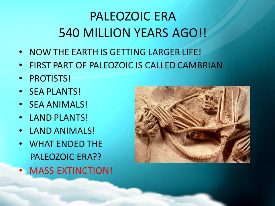 PALEOZOIC ERA 540 MILLION YEARS AGO!!