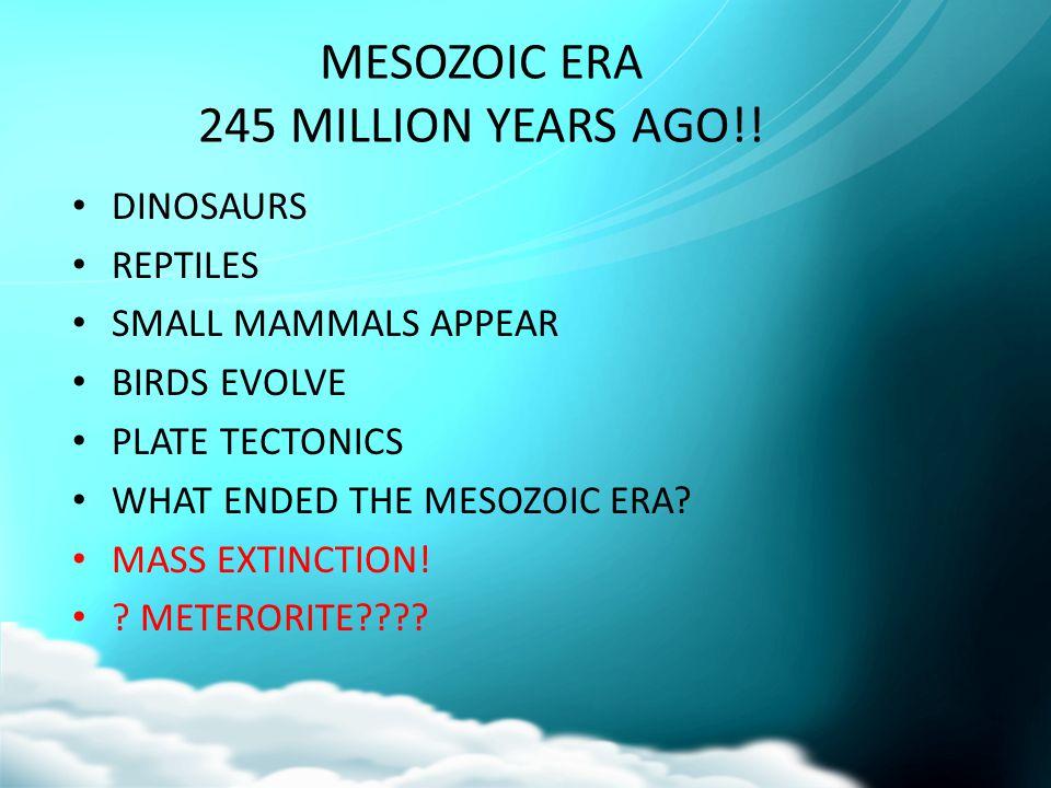 MESOZOIC ERA 245 MILLION YEARS AGO!!