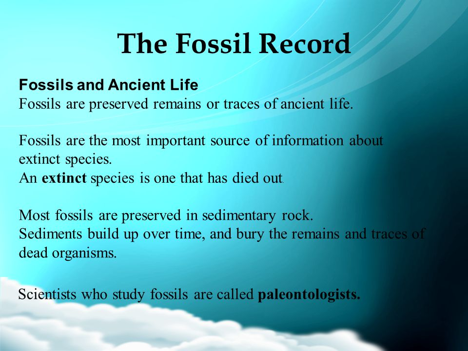 The Fossil Record Fossils and Ancient Life