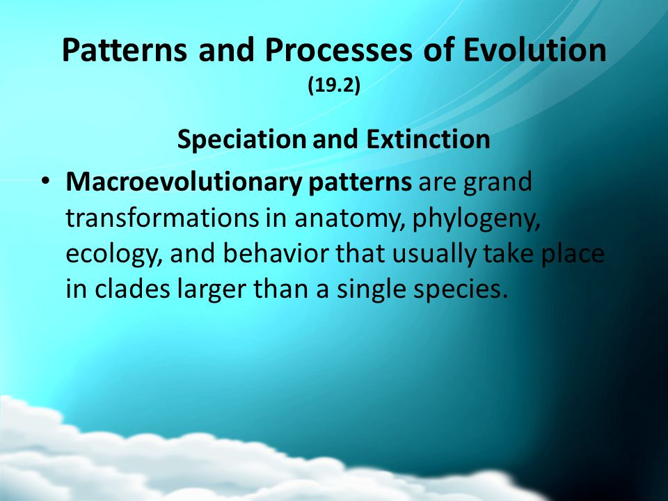Patterns and Processes of Evolution (19.2)