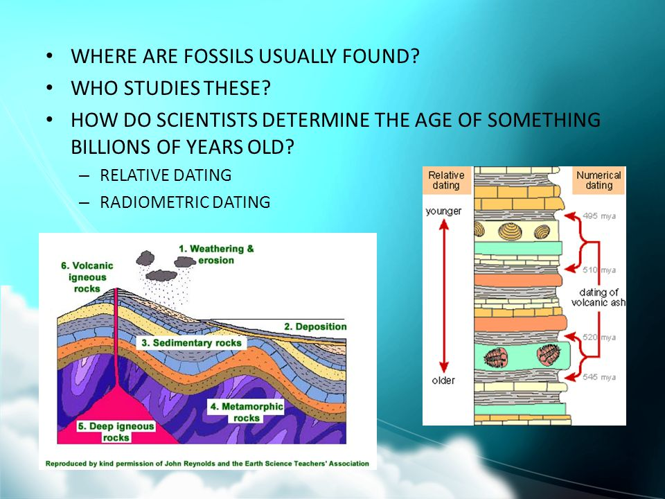 WHERE ARE FOSSILS USUALLY FOUND WHO STUDIES THESE