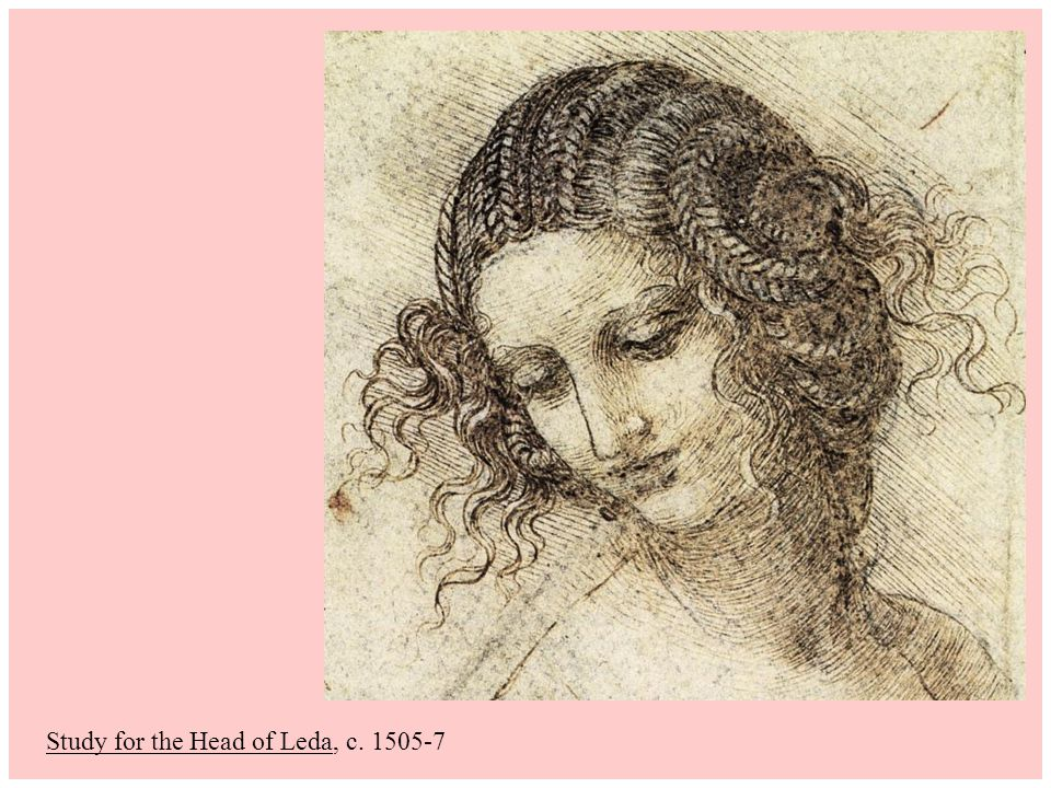 Study for the Head of Leda, c. 1505-7