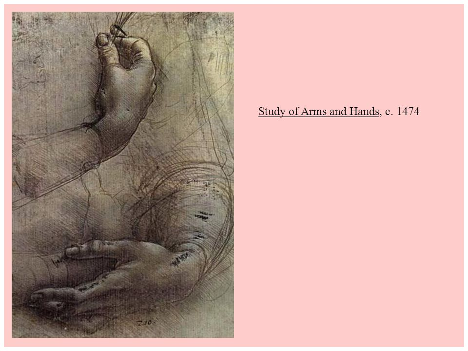 Study of Arms and Hands, c. 1474