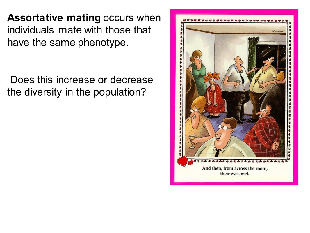 Assortative mating occurs when individuals mate with those that have the same phenotype.