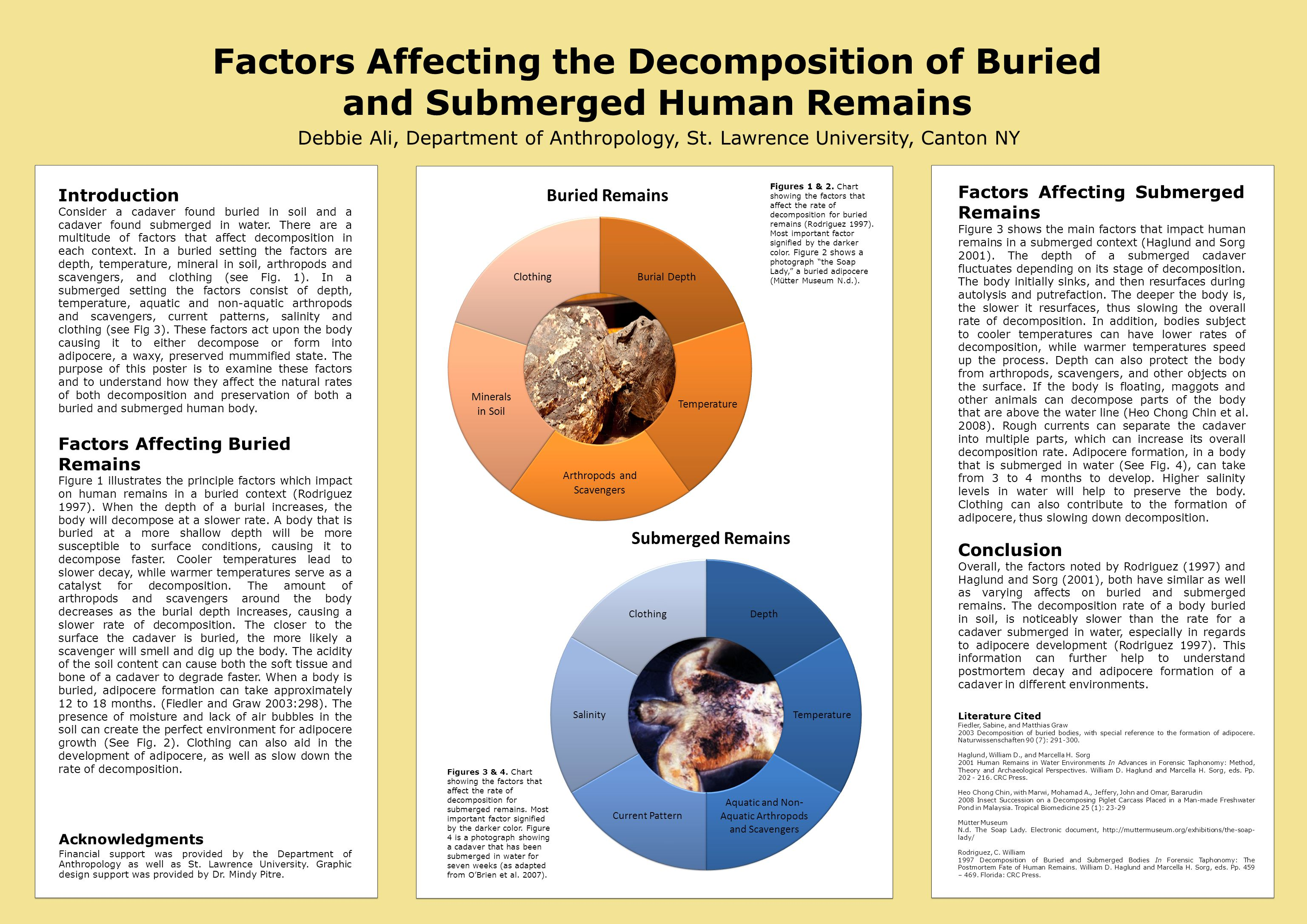 Factors Affecting the Decomposition of Buried