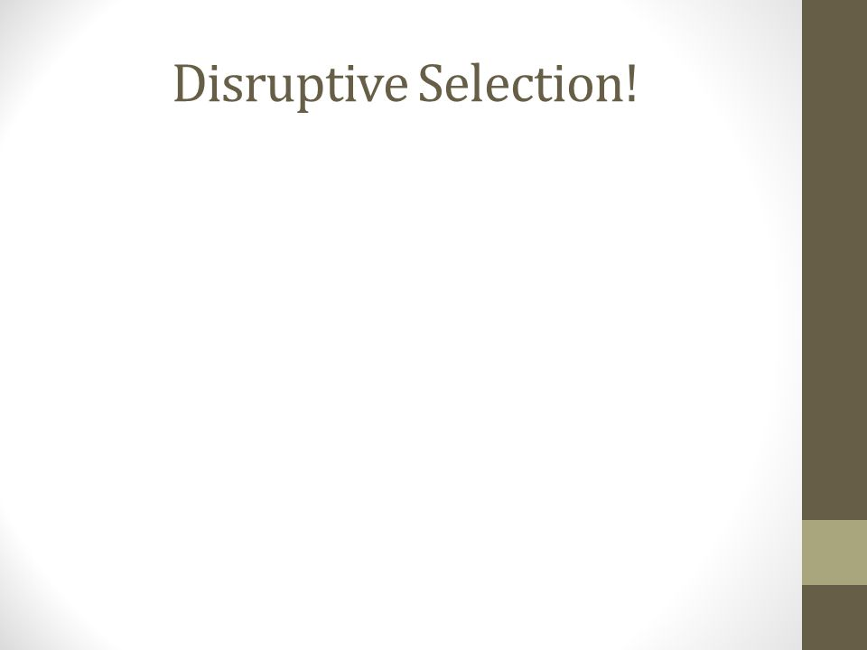 Disruptive Selection!