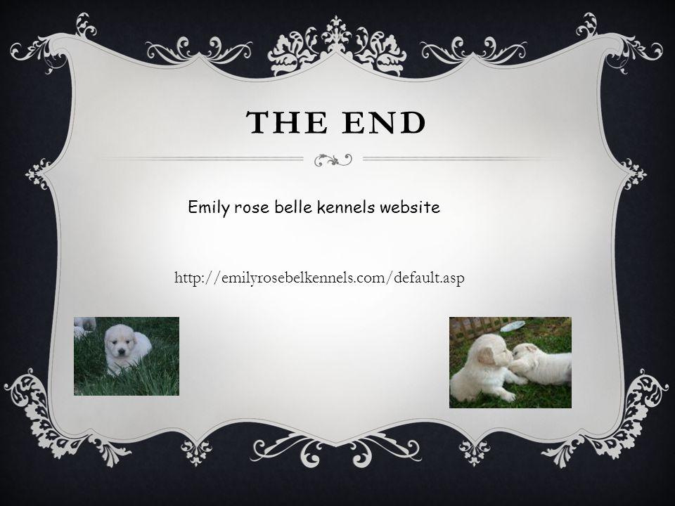 The end Emily rose belle kennels website