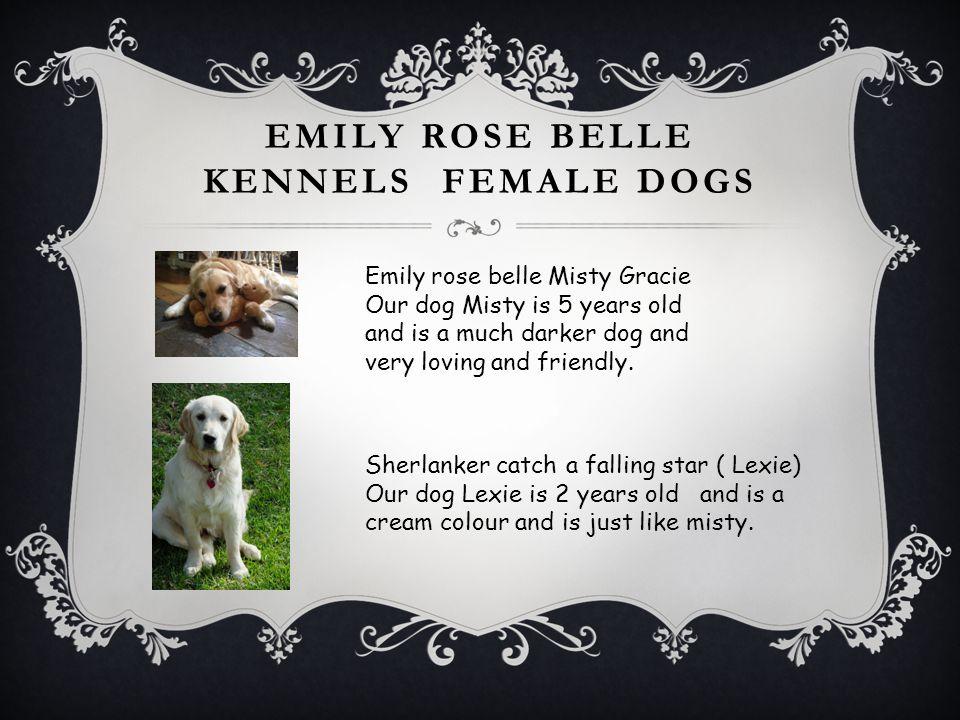 Emily rose belle kennels female dogs