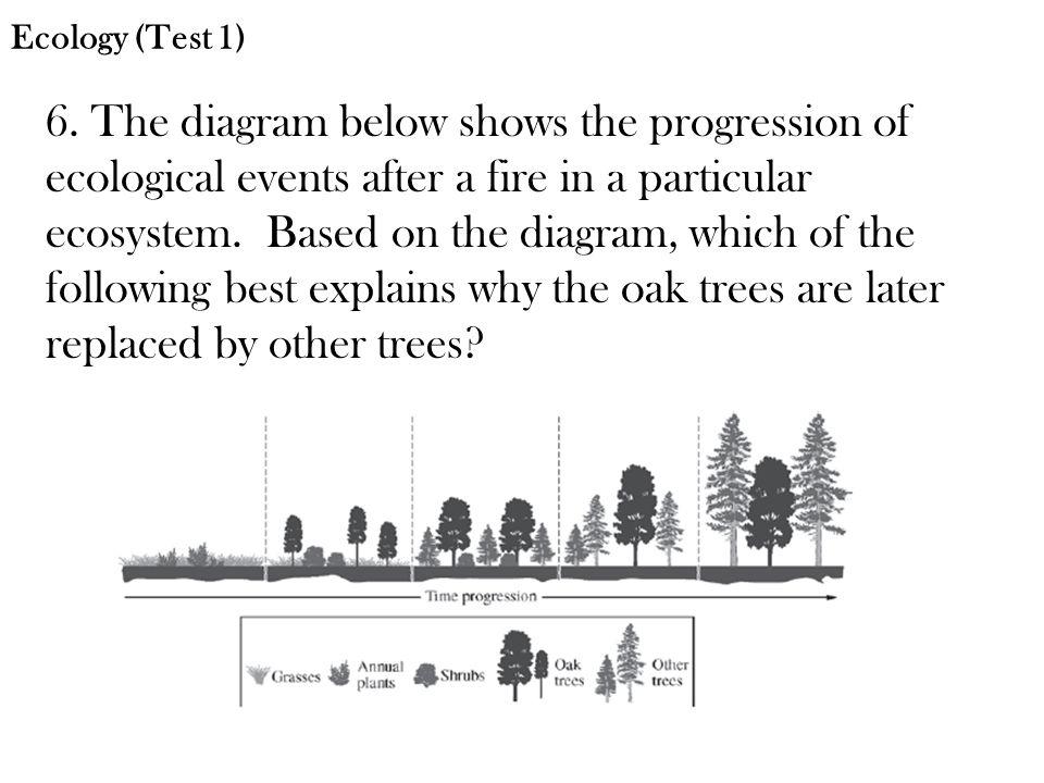 Ecology (Test 1)