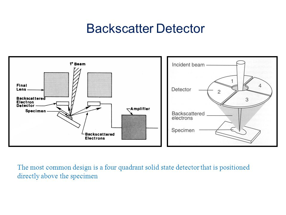 Backscatter Detector The most common design is a four quadrant solid state detector that is positioned directly above the specimen.