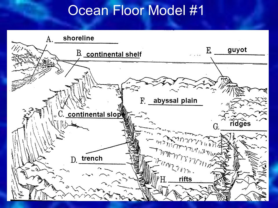 Ocean Floor Model #1 shoreline guyot continental shelf abyssal plain