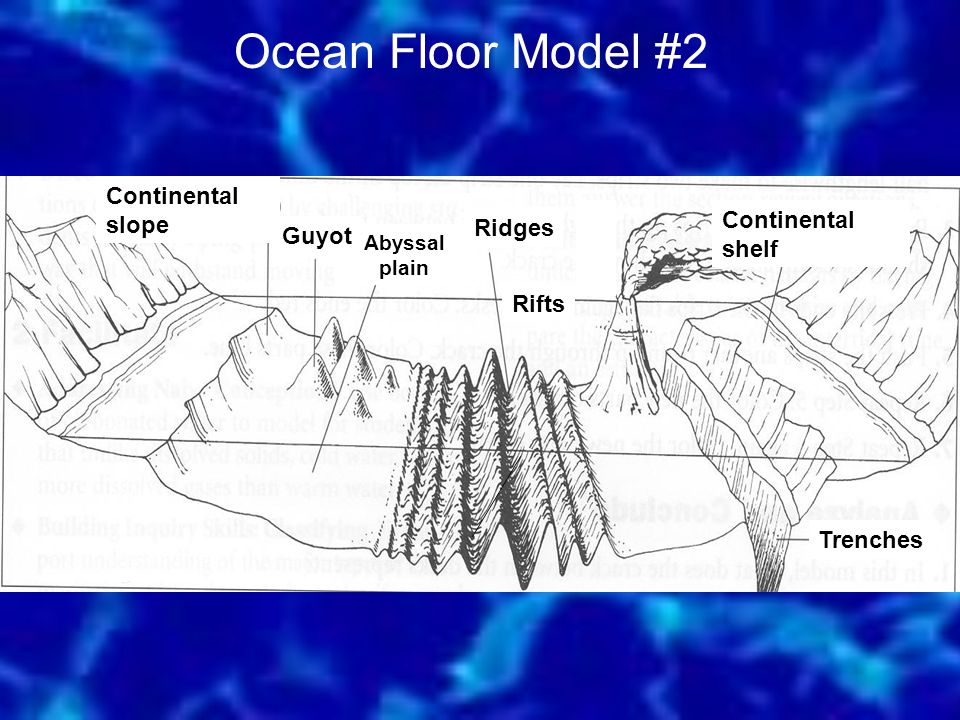 Ocean Floor Model #2 Continental slope Continental shelf Ridges Guyot