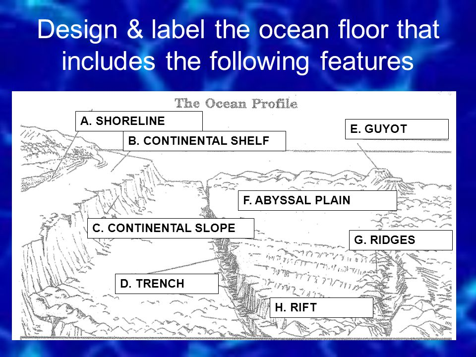 Design & label the ocean floor that includes the following features