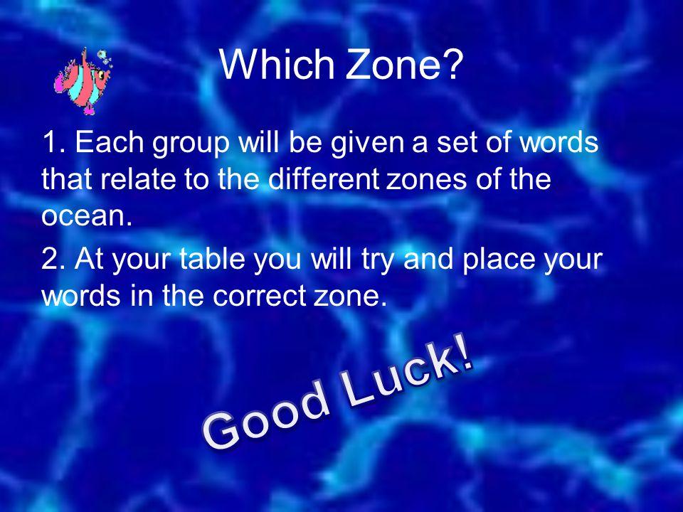 Which Zone