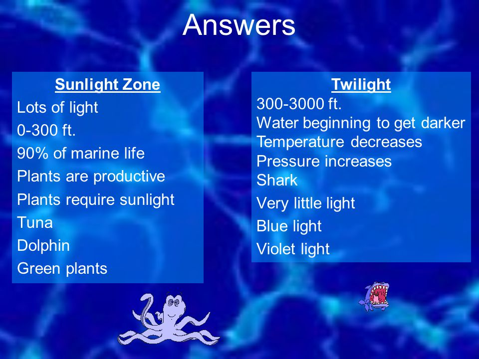 Answers Sunlight Zone Lots of light 0-300 ft. 90% of marine life Plants are productive Plants require sunlight Tuna Dolphin Green plants