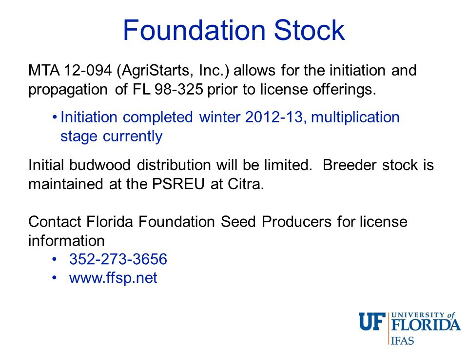 Foundation Stock MTA 12-094 (AgriStarts, Inc.) allows for the initiation and propagation of FL 98-325 prior to license offerings.