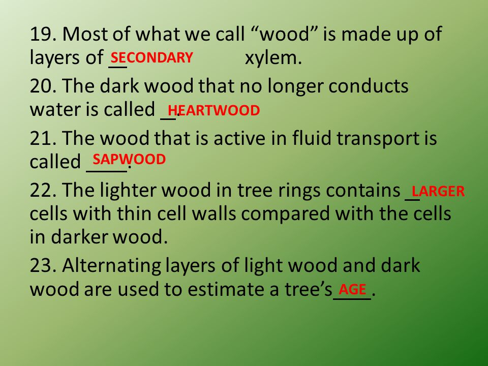 19. Most of what we call wood is made up of layers of xylem. 20