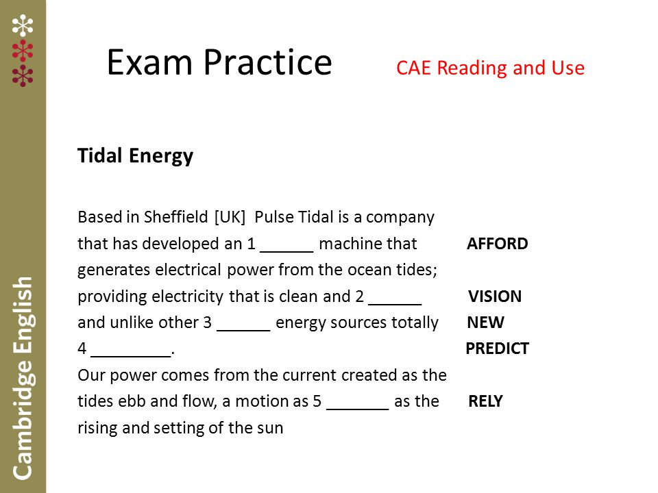 Exam Practice CAE Reading and Use