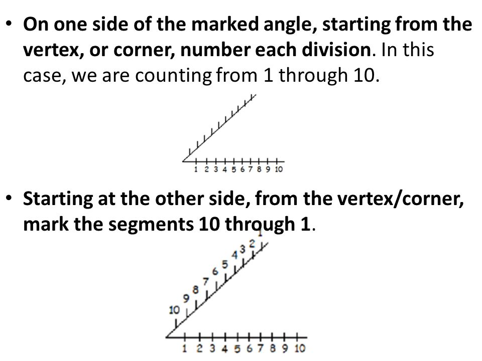 On one side of the marked angle, starting from the vertex, or corner, number each division. In this case, we are counting from 1 through 10.