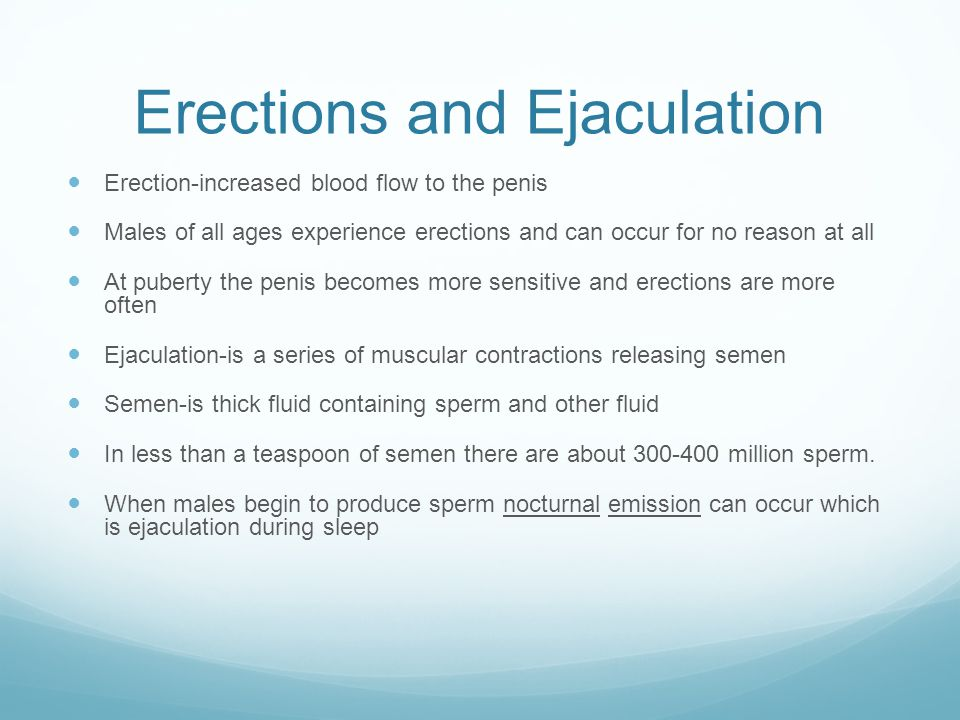 Erections and Ejaculation