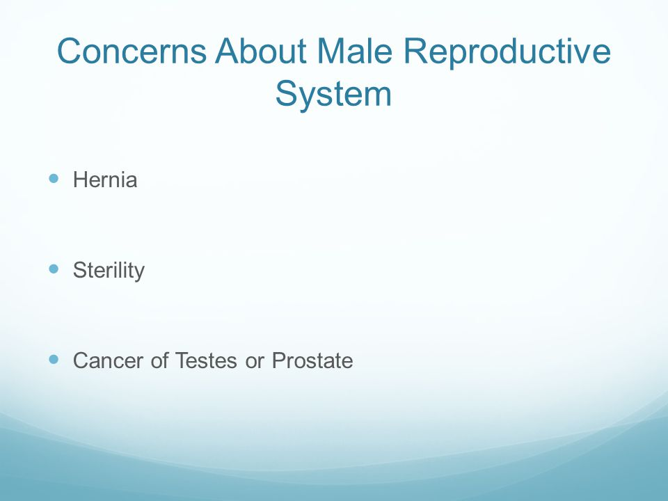 Concerns About Male Reproductive System