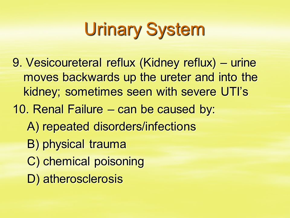 Urinary System 9. Vesicoureteral reflux (Kidney reflux) – urine moves backwards up the ureter and into the kidney; sometimes seen with severe UTI's.