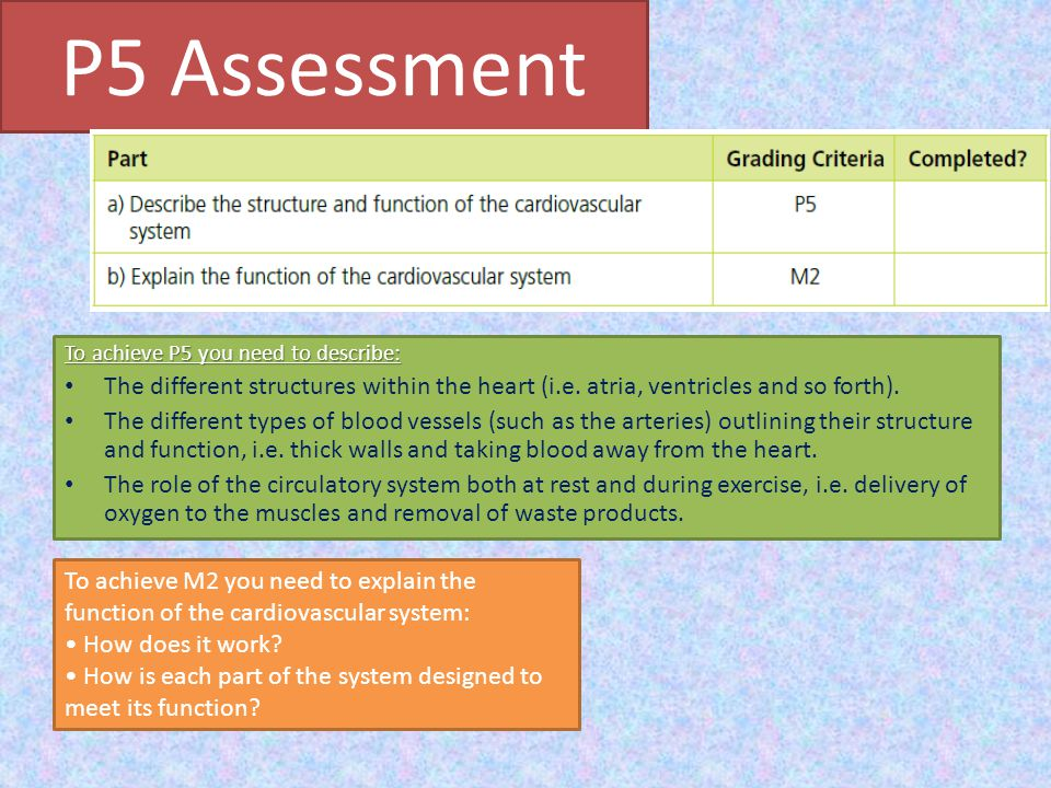 P5 Assessment To achieve P5 you need to describe: The different structures within the heart (i.e. atria, ventricles and so forth).