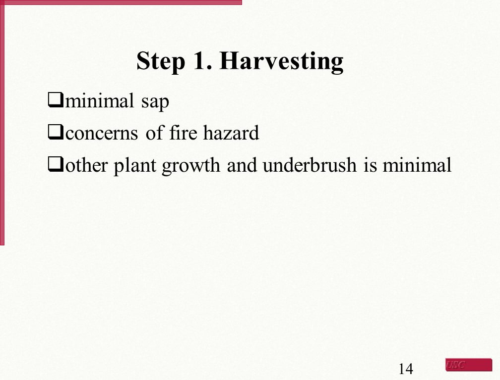 Step 1. Harvesting minimal sap concerns of fire hazard