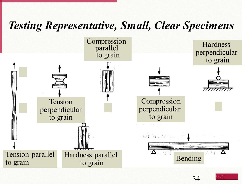 Testing Representative, Small, Clear Specimens