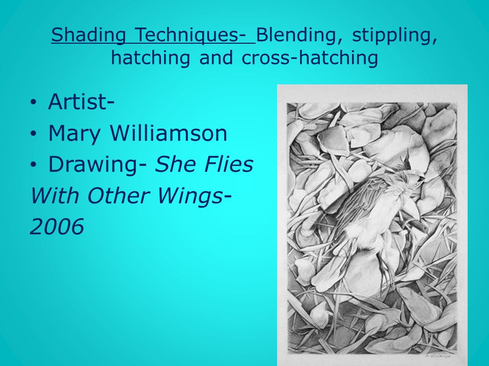 Shading Techniques- Blending, stippling, hatching and cross-hatching
