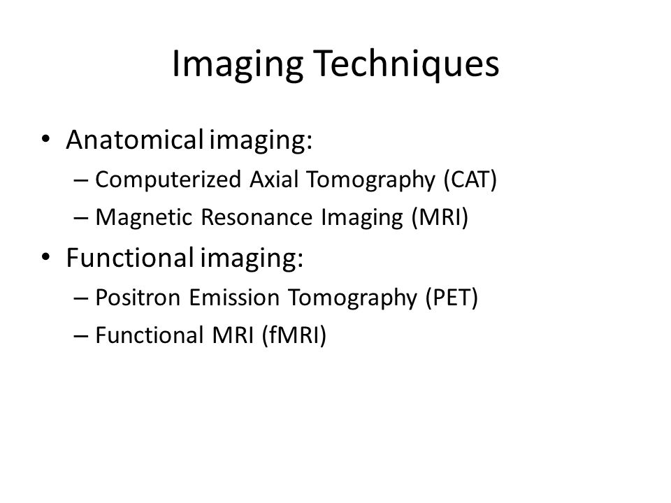 Imaging Techniques Anatomical imaging: Functional imaging: