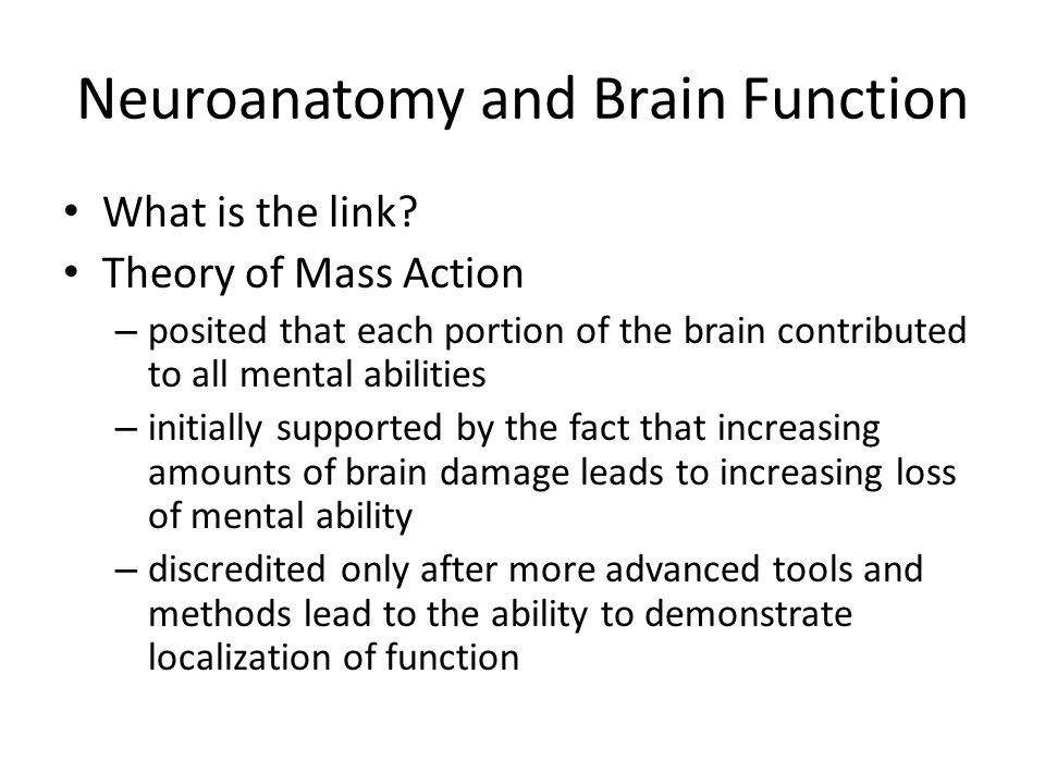 Neuroanatomy and Brain Function