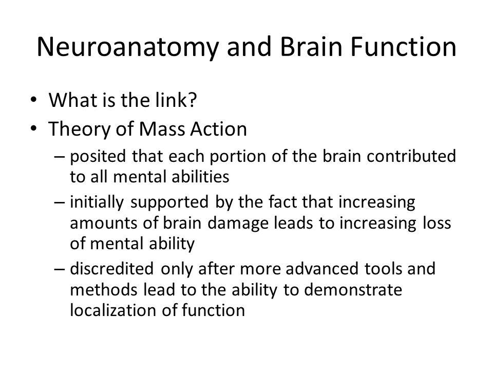 Neuroanatomy and Brain Function