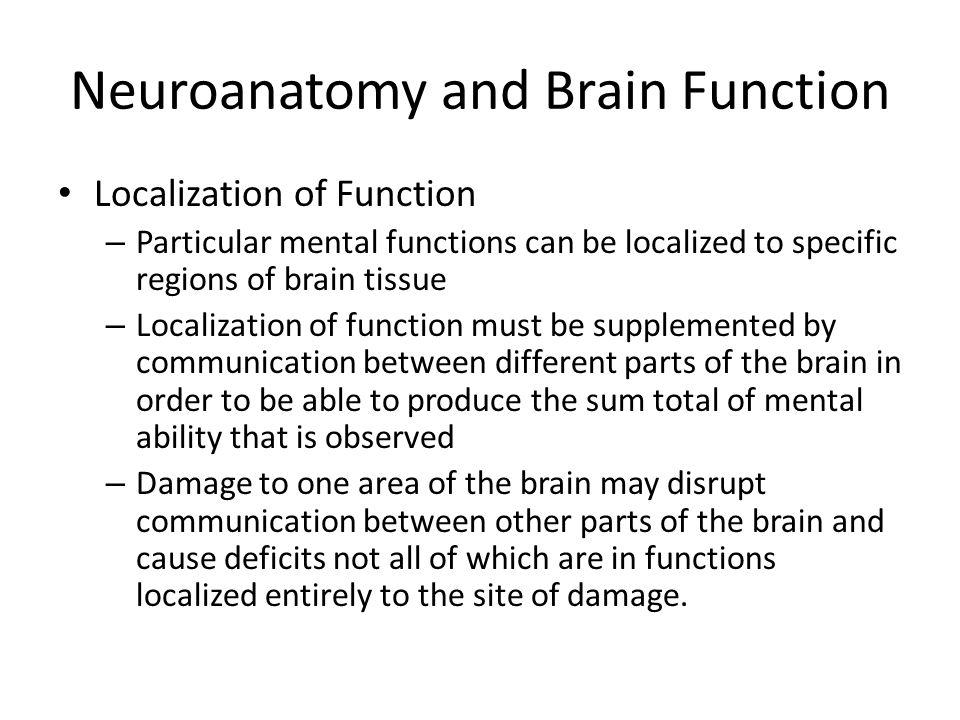 Localization Function in the Brain Essay Sample