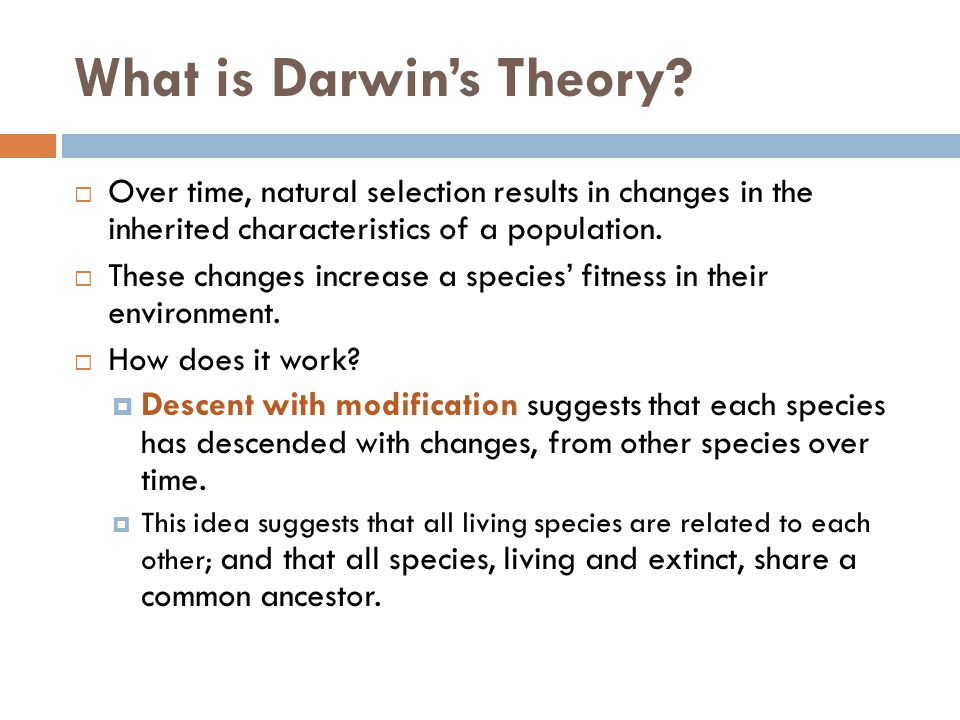 What is Darwin's Theory