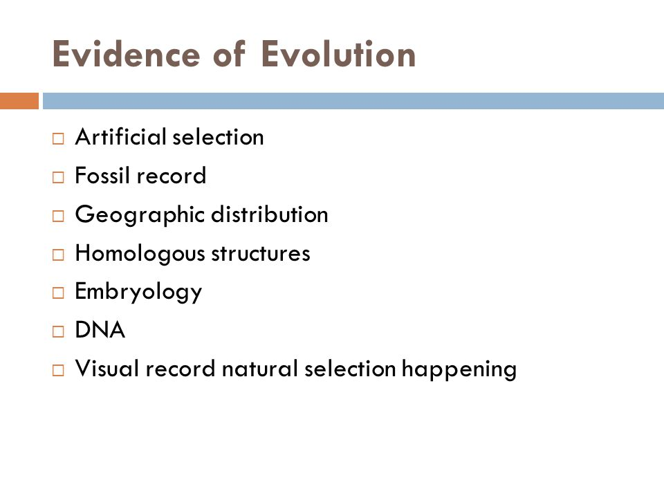 Evidence of Evolution Artificial selection Fossil record