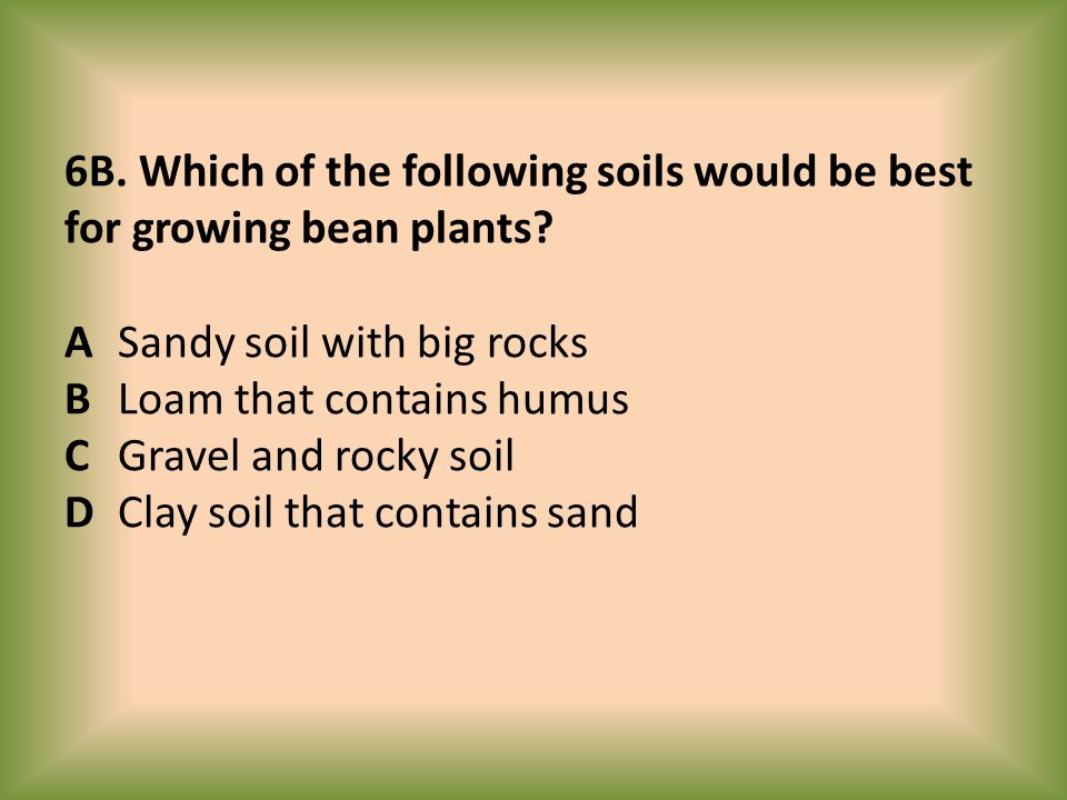 6B. Which of the following soils would be best for growing bean plants