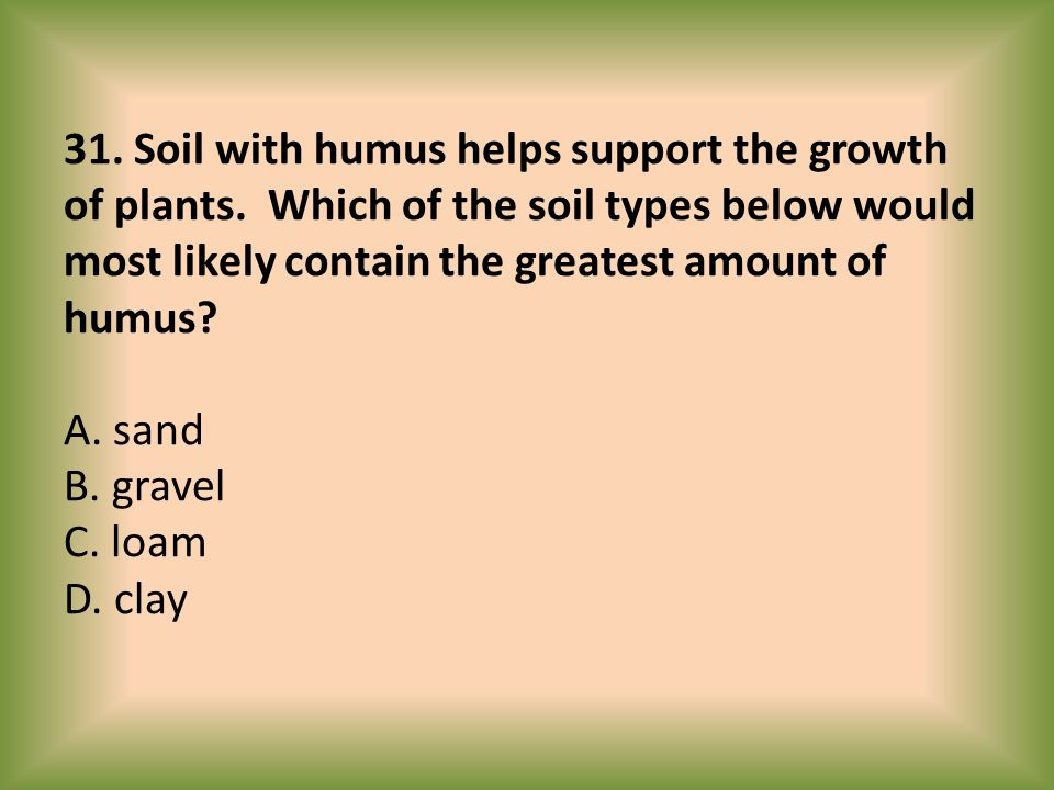 31. Soil with humus helps support the growth of plants
