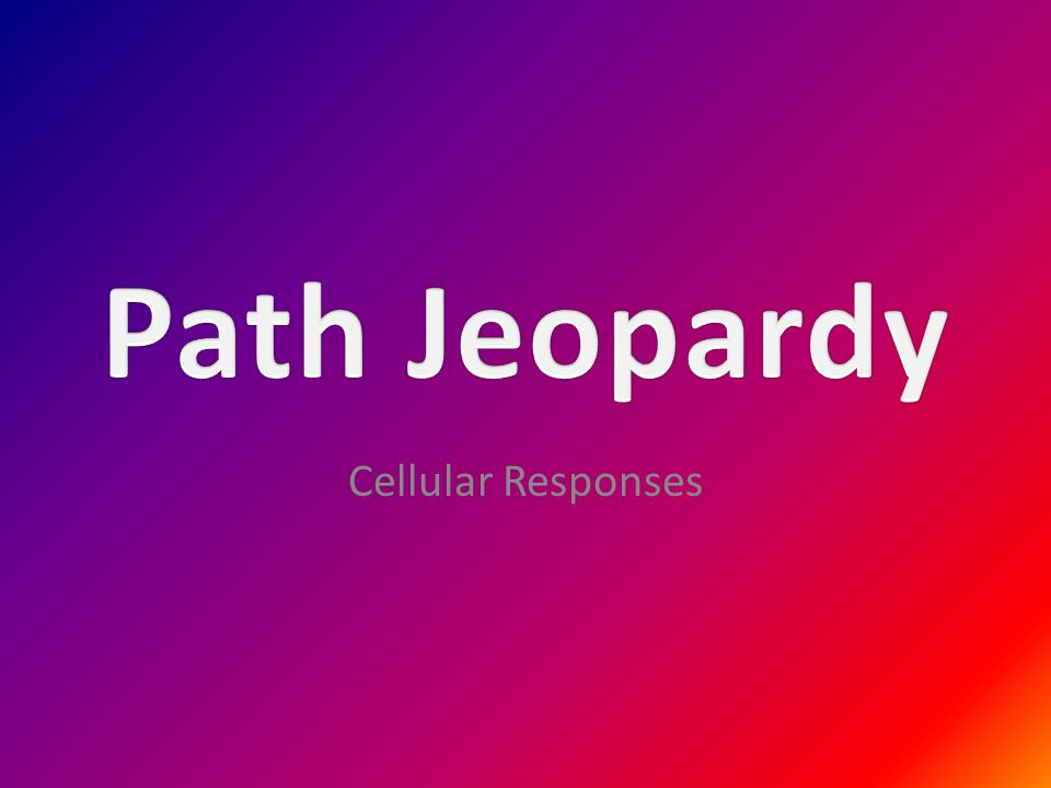 Path Jeopardy Cellular Responses