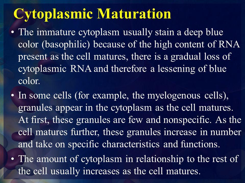 Cytoplasmic Maturation