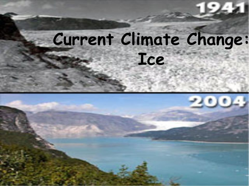 Current Climate Change: Ice