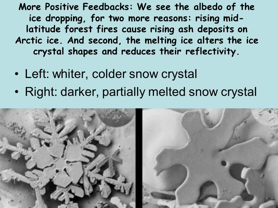 Left: whiter, colder snow crystal