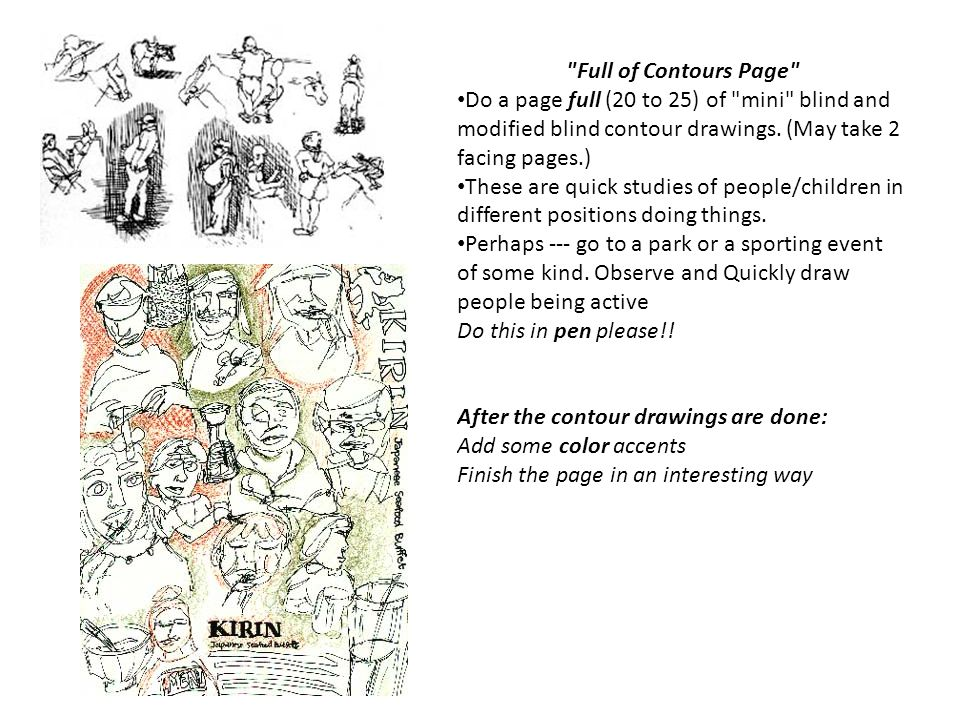 Full of Contours Page Do a page full (20 to 25) of mini blind and modified blind contour drawings. (May take 2 facing pages.)