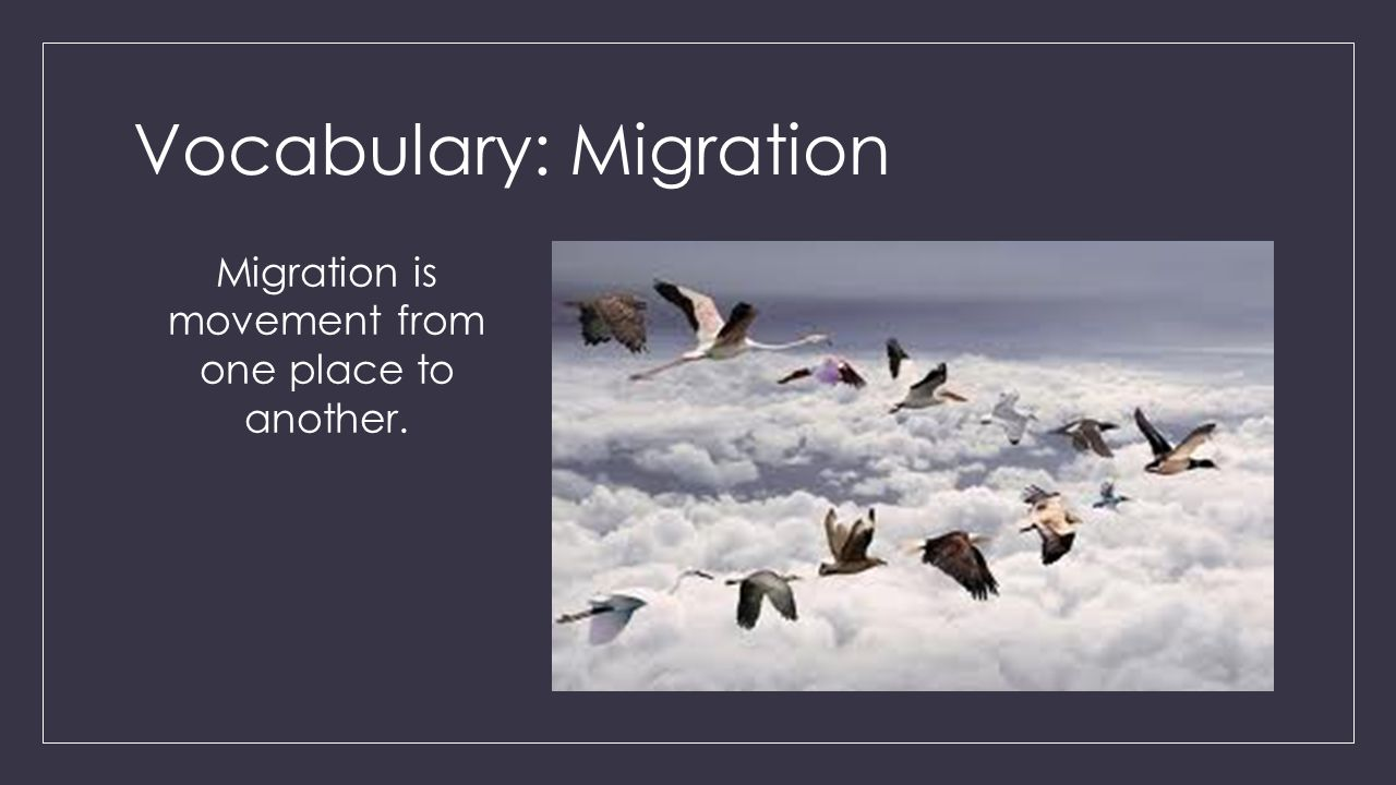 Vocabulary: Migration